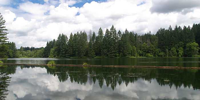 Lacamas Lake Park